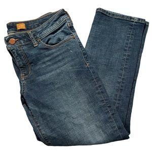 Pilcro and the Letterpress Stet Jeans Blue Size 28
